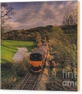 Taw Valley Wood Print by Rob Hawkins