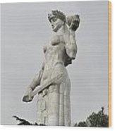 Tbilisi Mother Of Georgia Statue Wood Print