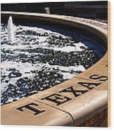 Tcu Frog Fountain Wood Print