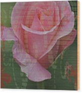 Tea Rose - Asia Series Wood Print