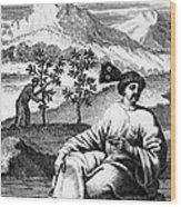 Tea: Treatise, 1687 Wood Print