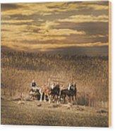 Team Of Four Horses Wood Print