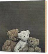 Teddy Bear Family Wood Print
