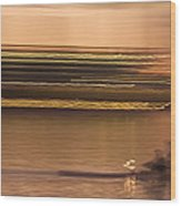 Tempe Town Lake Rowers Abstract Wood Print