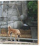 Temple Dog And Buddha Wood Print
