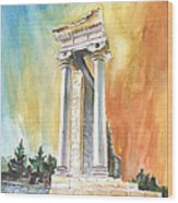 Temple Of Apollo In Kourion Wood Print