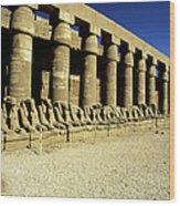 Temple Of Karnak, Luxor - Egypt Wood Print