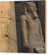 Temple Of Luxor  Egypt Wood Print