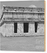 Temple Of The Turtles At Uxmal Mexico Black And White Wood Print