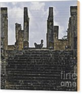 Temple Of The Warriors Wood Print