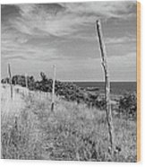 Ten-foot Poles Arild Wood Print