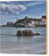 Tenby Harbour 1 Wood Print