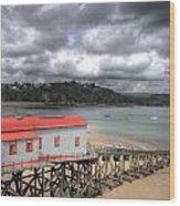 Tenby Lifeboat House Wood Print