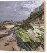 Tenby Rocks Painted Wood Print