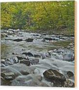 Tennessee Stream 6031 Wood Print