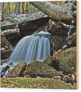 Tennessee Waterfall 5962 Wood Print