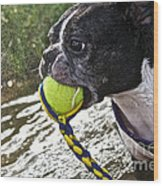Tennis Ball Mist Wood Print