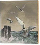 Terns In The Wind Wood Print