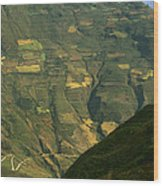 Terraced Fields Above Canyon Draining Wood Print