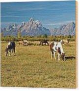 Teton Horses Wood Print