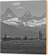 Tetonia Grain Elevators Wood Print