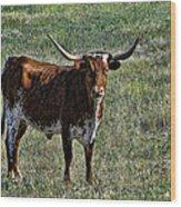 Texa Longhorn Wood Print