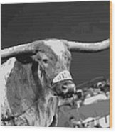 Texas Bevo Bw15 Wood Print