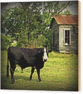 Texas Lawn Mower Wood Print
