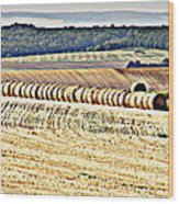 Textured Fields Of France Wood Print