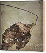 Textured Leaf Wood Print