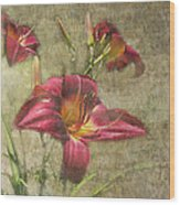 Textured Red Daylilies Wood Print