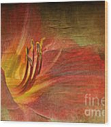 Textured Red Daylily Wood Print