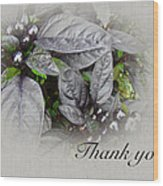 Thank You Card - Silver Leaves And Berries Wood Print