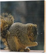 Thank You For The Nuts Wood Print