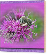 Thank You Greeting Card - Bumblebee On Ironweed Wood Print