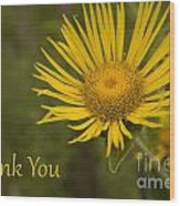 Thank You Yellow Aster Wood Print