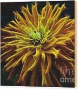 thank you Zinnia Flower Wood Print