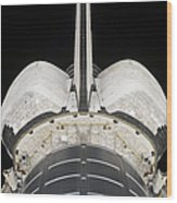 The Aft Portion Of The Space Shuttle Wood Print