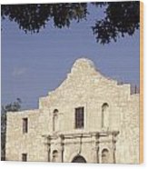 The Alamo San Antonio Texas Wood Print