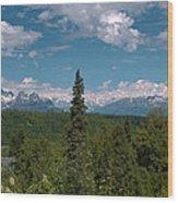 The Alaska Range Wood Print