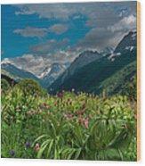 The Alpine Meadows Wood Print