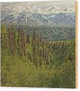The Alsek Mountains Along The Haines Wood Print