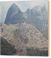 The Ancient City Wood Print