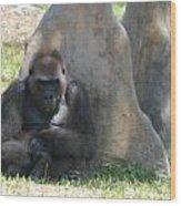 The Angry Ape Wood Print