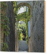The Arches Wood Print