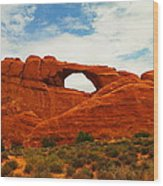 The Arches Of Utah Wood Print