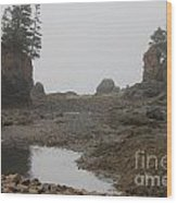 The Bay Of Fundy Wood Print