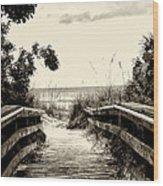 The Beach Path - Clearwater Beach Wood Print