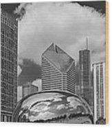 The Bean Chicago Illinois Wood Print