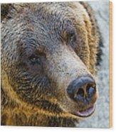 The Bear Head Shoot Wood Print